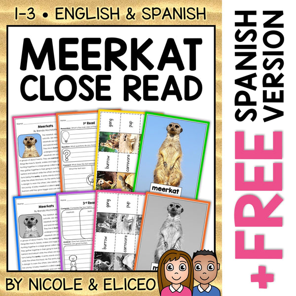 Meerkat Close Reading Passage Activities