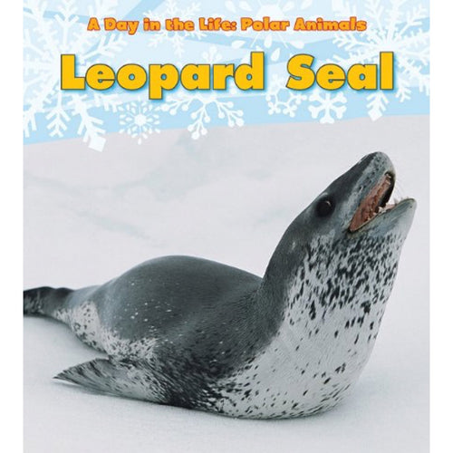 Leopard Seal (Ages:5-7)