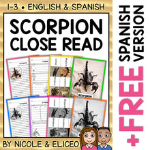 Load image into Gallery viewer, Scorpion Close Reading Passage Activities
