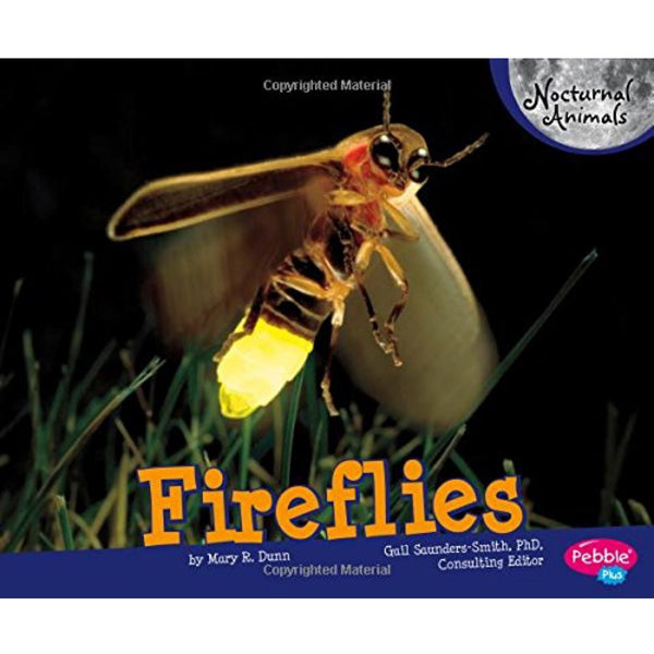 Fireflies (Ages:4-8)