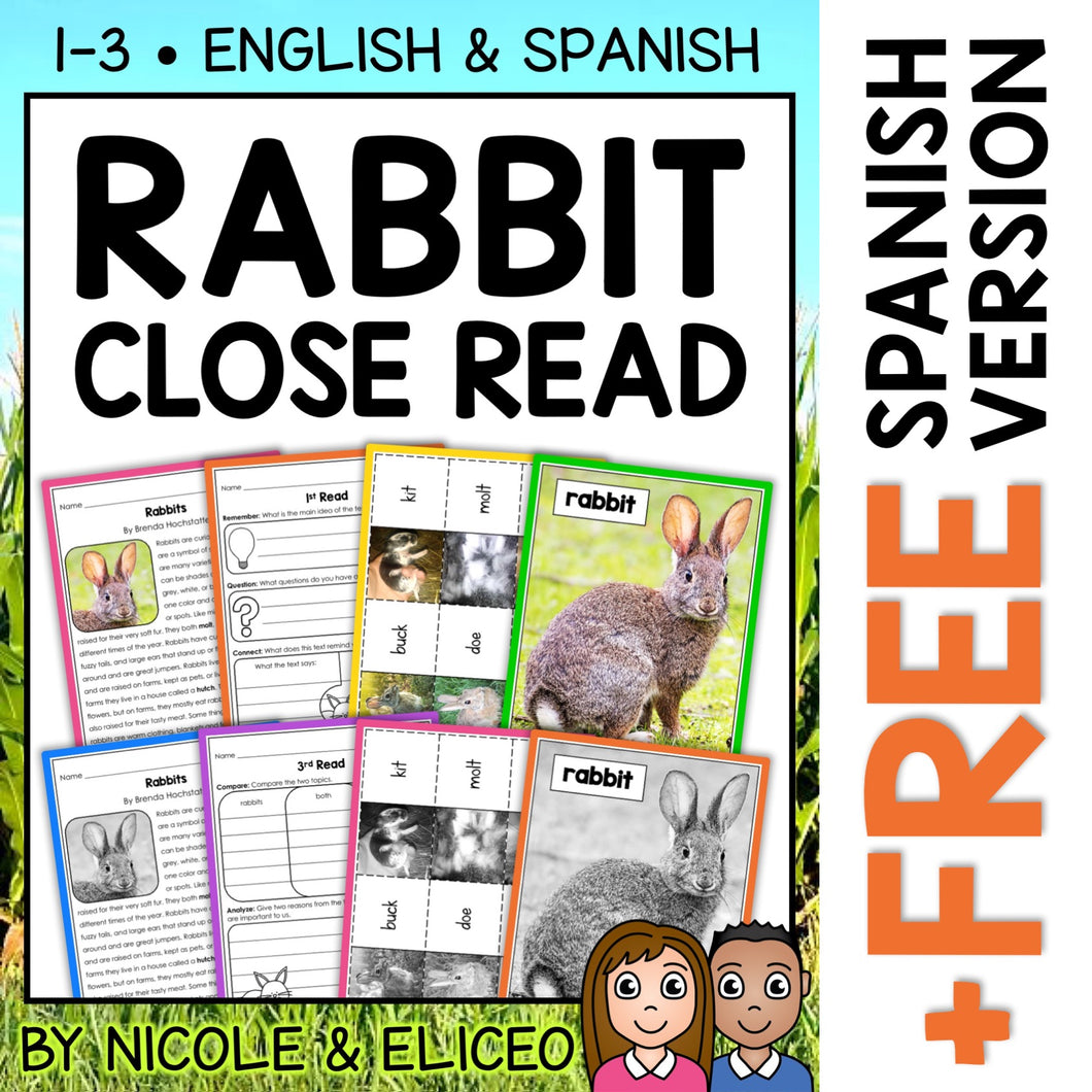 Rabbit Close Reading Passage Activities