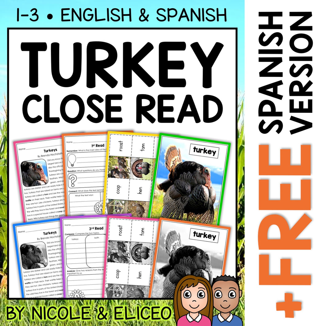 Turkey Close Reading Passage Activities