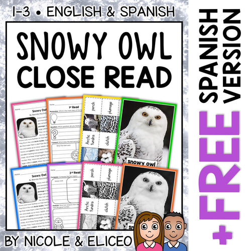 Snowy Owl Close Reading Passage Activities