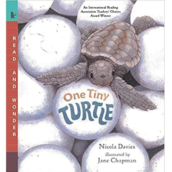 One Tiny Turtle: Read and Wonder (Ages:4-8)