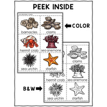 Load image into Gallery viewer, Tide Pool Animals Activity Crown and Necklace