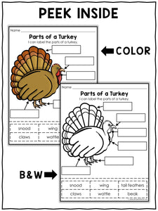Parts of a Turkey Activities