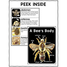 Load image into Gallery viewer, Bee Activities Nonfiction Unit