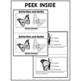 Butterfly Book Activity