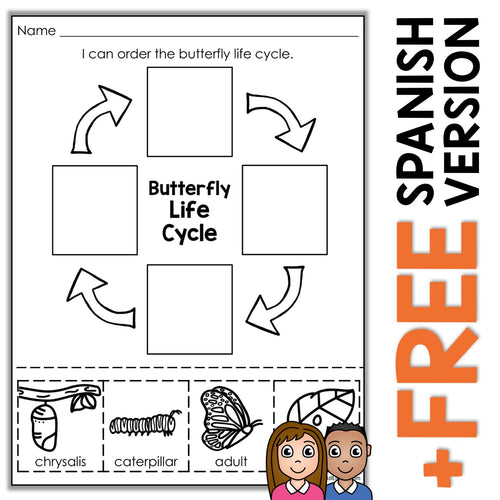 Monarch Butterfly Life Cycle Activity