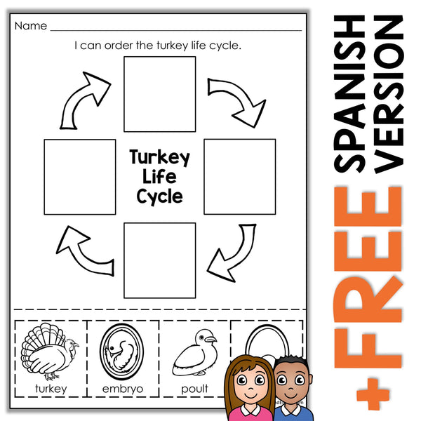 Turkey Life Cycle Activity