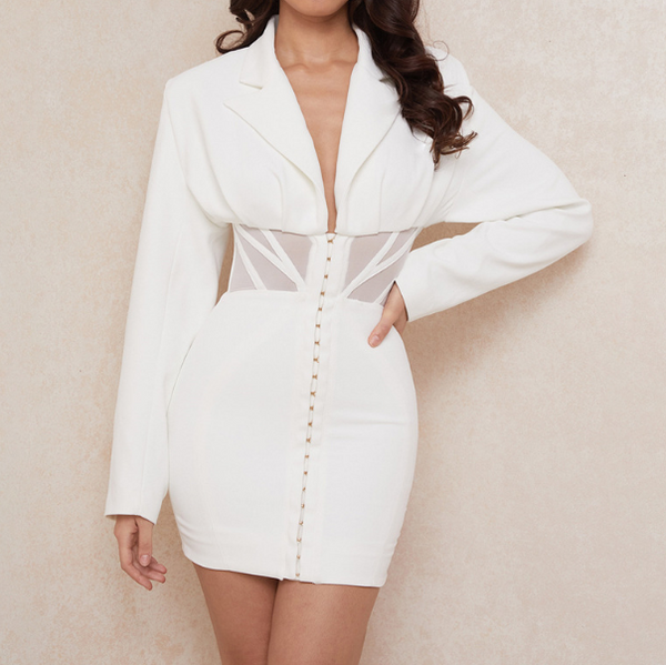 V-Neck Long Sleeve Sexy Slim Dress