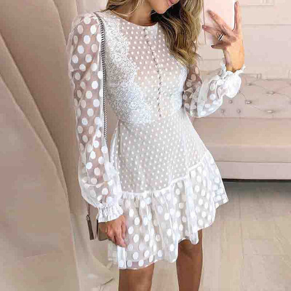 Sexy Lace Long Sleeve Dress