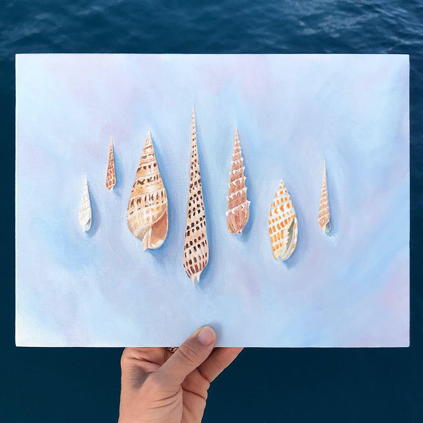 Series of 7 Shells in a Painting Art Print Tahiti Seashells