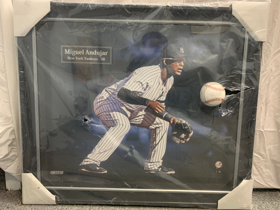 Miguel Andujar autographed baseball and photopraph