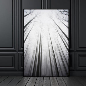 Norwegian Tall Forest Canvas Art - Pebble & Leaf Ltd