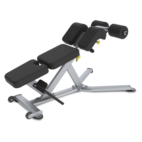 True Fitness FS-22 Low Back/Abdominal Bench