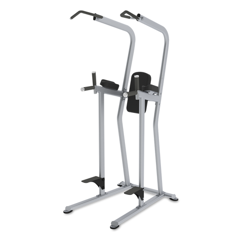 True Fitness FS-23 Knee Raise/Dip/Chin Station