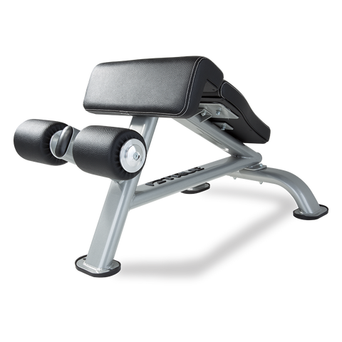 True Fitness SF-1010 Ab Bench