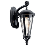 Cresleigh Outdoor Wall 1-Light in Black with Silver Highlights