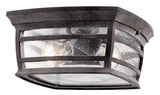 Wiscombe Park Outdoor Ceiling Light 2-Light in Weathered Zinc