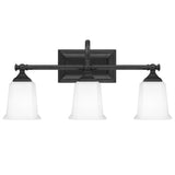 Nicholas 3-Light Bath in Earth Black