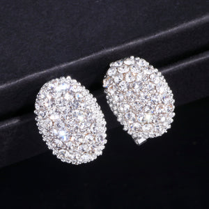 Classic Design Zirconia Stone Earrings - BuyModest.com