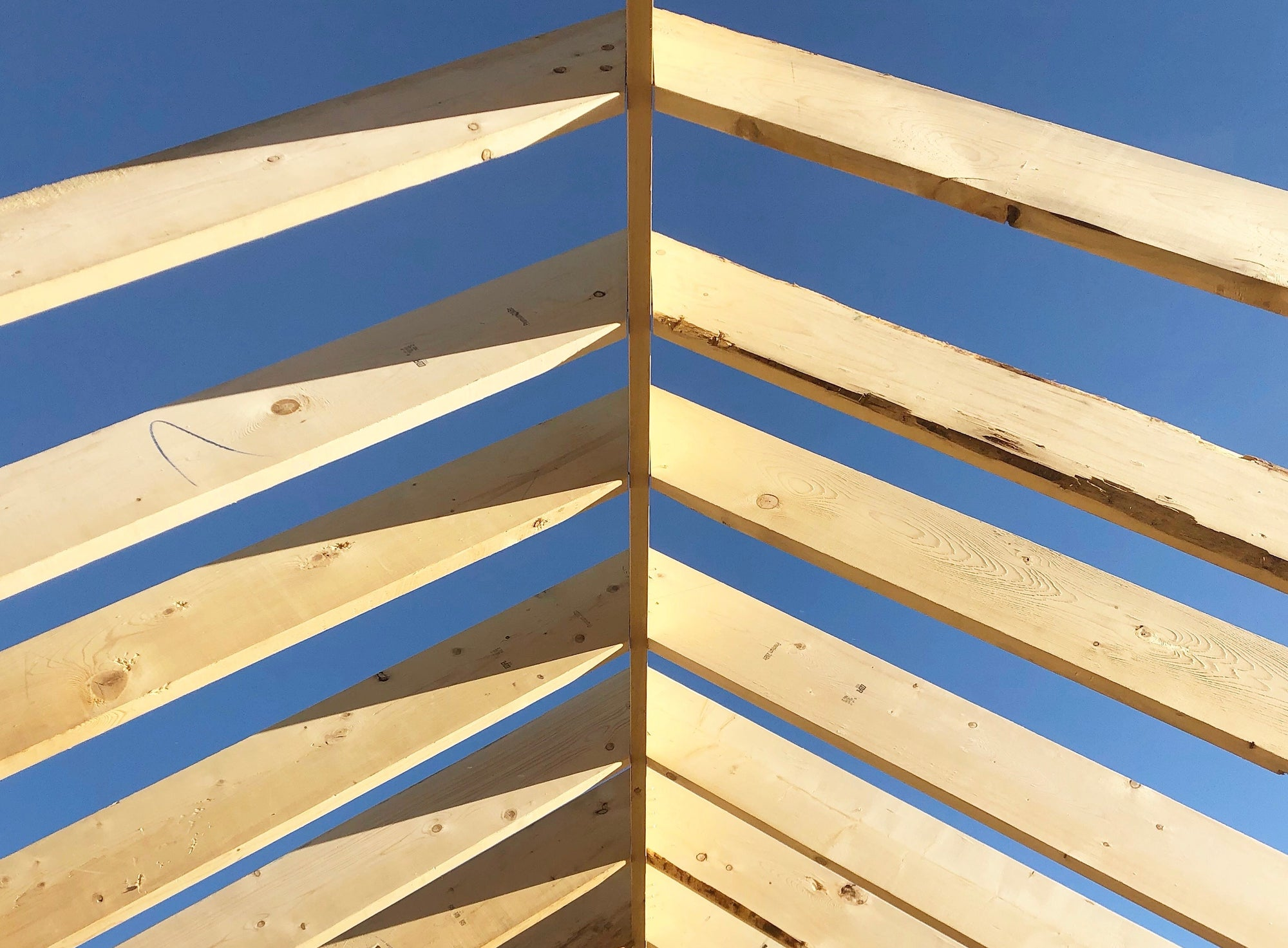 Common Roof Framing