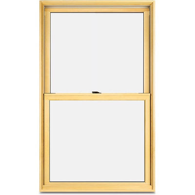 Marvin Elevate New Construction Double hung Window