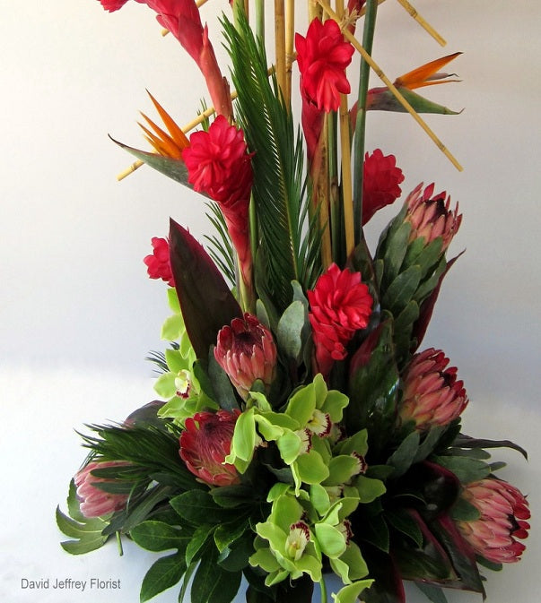Tropical Concepts by David Jeffrey Florist