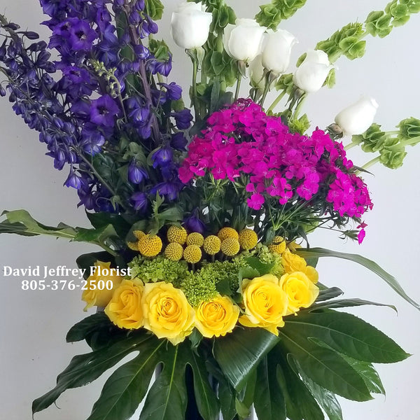David Jeffrey Blooms