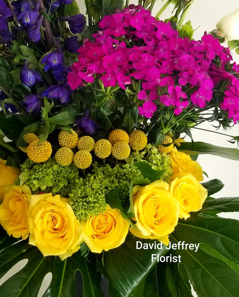 David Jeffrey's Blooms