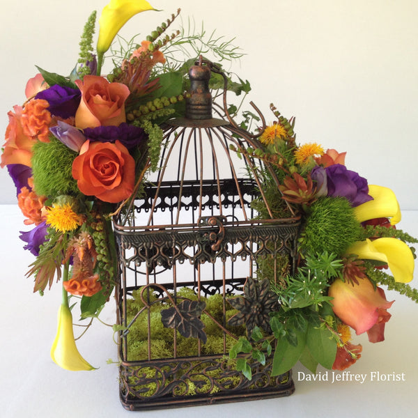 David Jeffrey's Autumn Birdcage