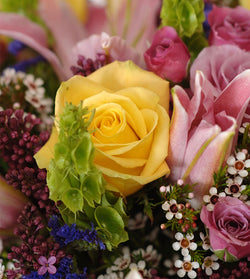 Affordable Flowers Online -Tributes by David Jeffrey Florist