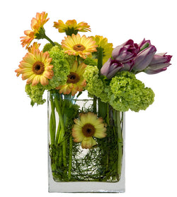 Summertime by David Jeffrey Florist