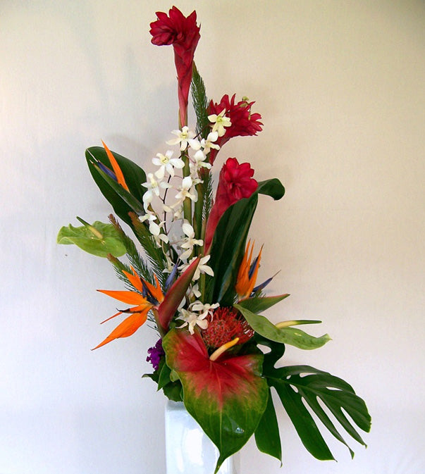 Tropical Surprise by David Jeffrey Florist