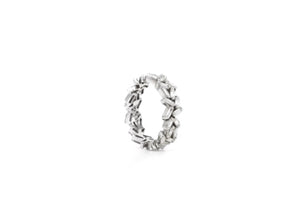 The Unruly Eternity Band