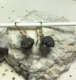 Perched Trilobite Fossil Earrings