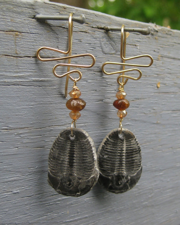 Ripple Trilobite Earrings 300 Million Years Old