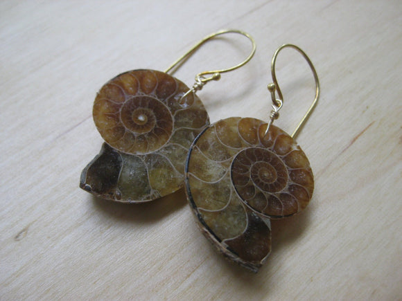 Large Ammonite Earrings
