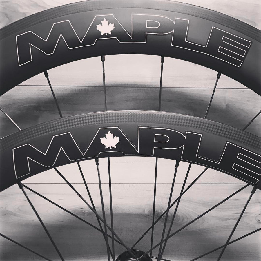 Maple Lima DT 350 Wheelset - Retired Closeout