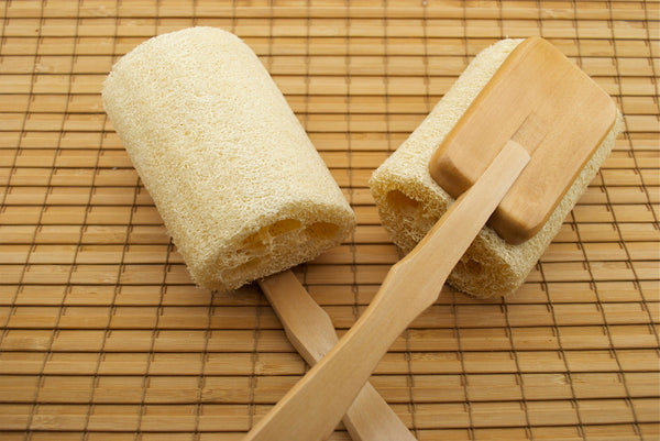 Back Brush - Loofah