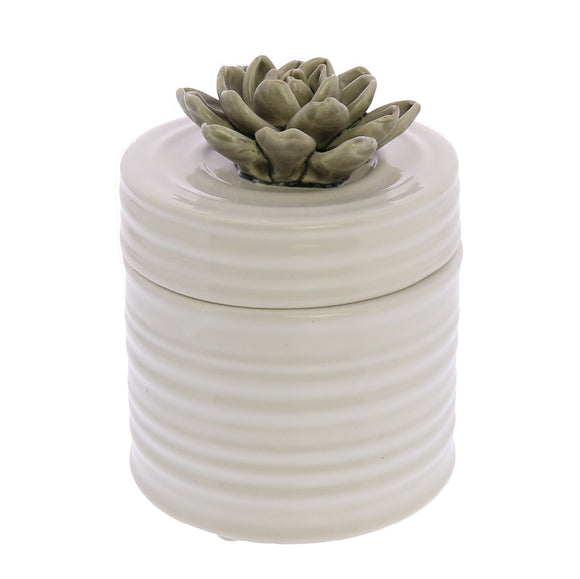 7678-44 - Succulent Canister - Medium - Grey by HomArt