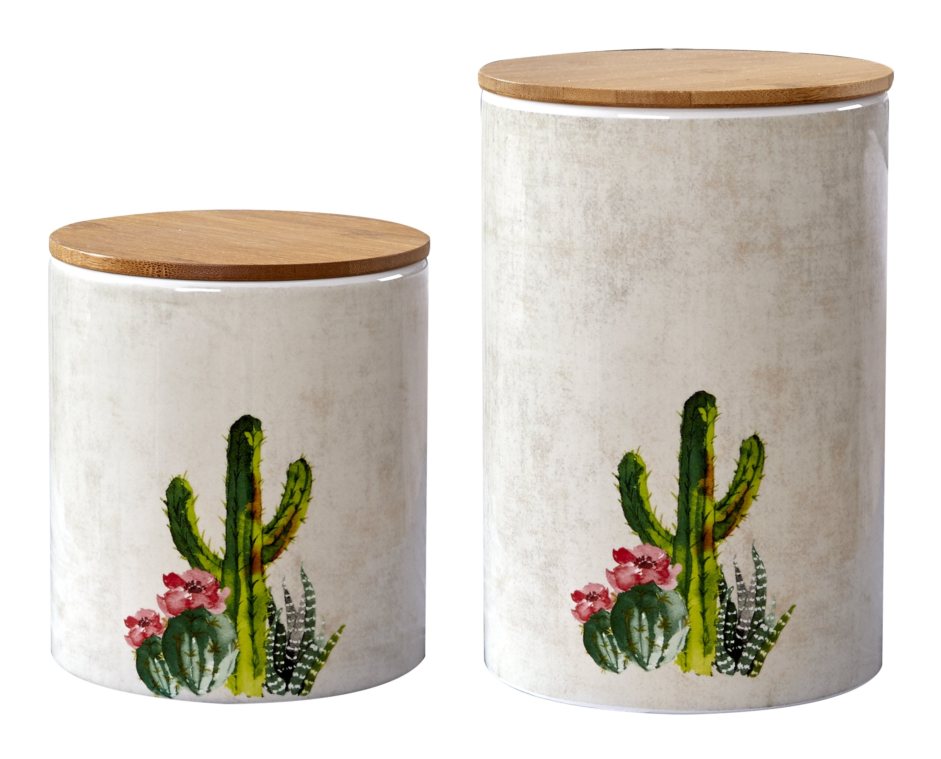 CS181501 - 2-Piece - Succulent Design - Canister Set