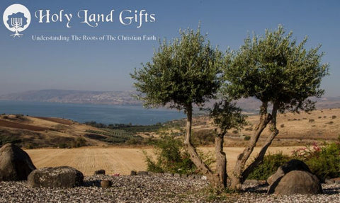 Olive Tree Messianic Holy Land Gifts