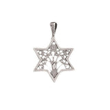 Star of David inlaid with the Tree of Life Necklace