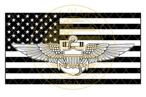 Naval Aviation Badge American Flag