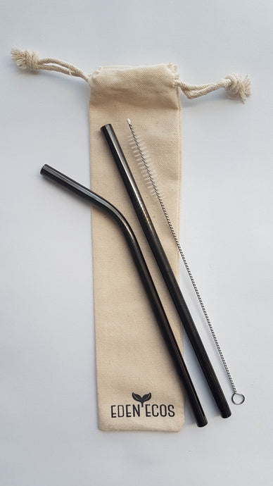 2 Stainless Steel Straws - With Bag and Brush