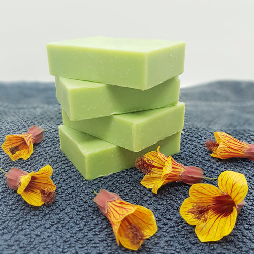 Natural Head Lice Bar