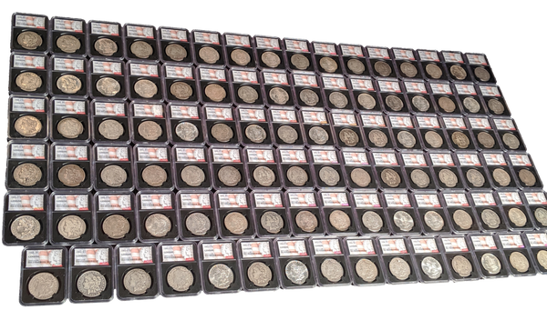The Morgan 95-Coin Complete Set