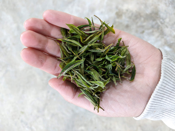 Georgian white tea